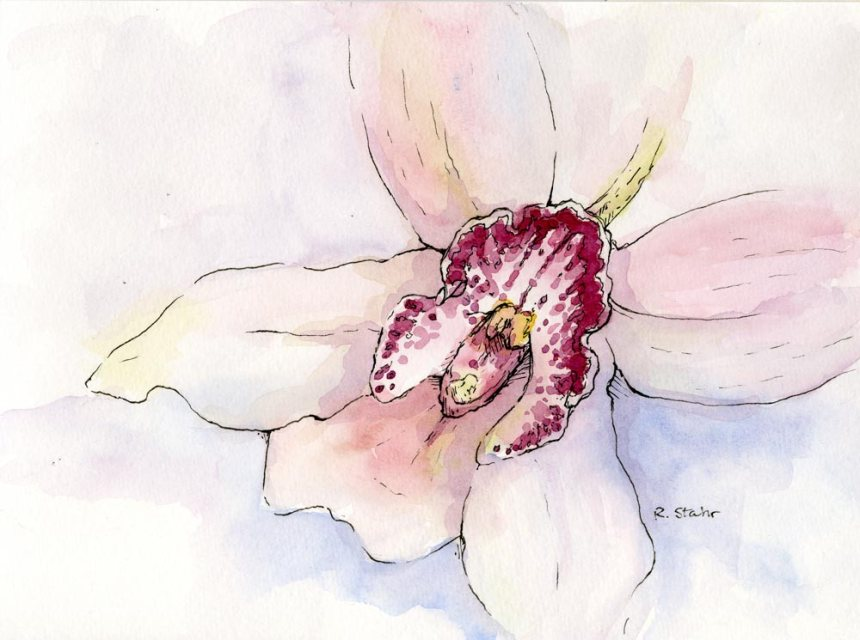 2013_watercolorandInk_OrchidBloom001_web